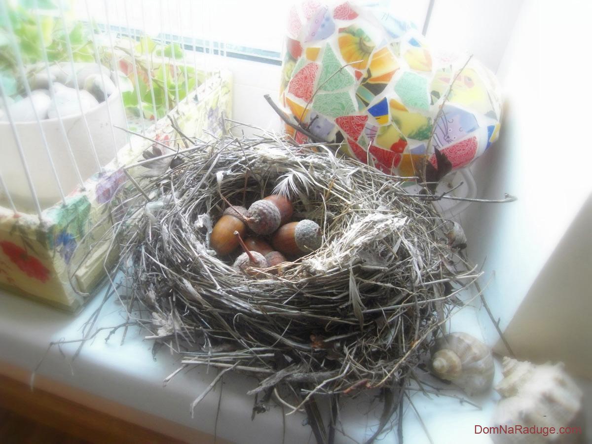 Как сделать птичьего гнезда 548