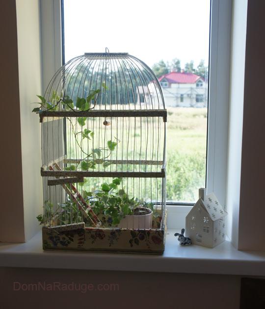 декупаж на клетке для птиц - теперь здесь живёт цветок