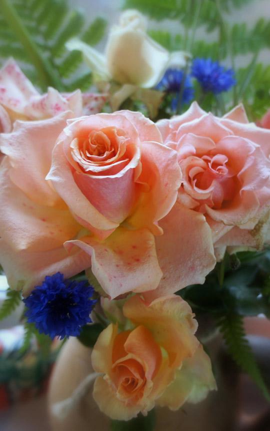 букет ноябрьских роз